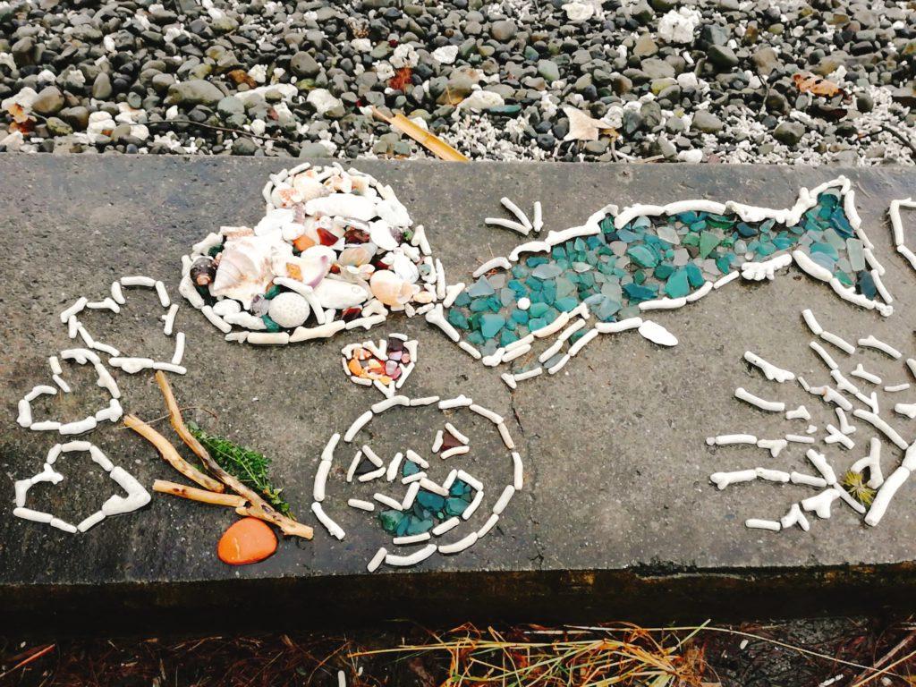 製氷海岸にあった枝サンゴのデコレーション